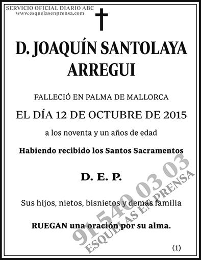 Joaquín Santolaya Arregui
